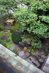 Japanese Gardens In New York And New Jersey